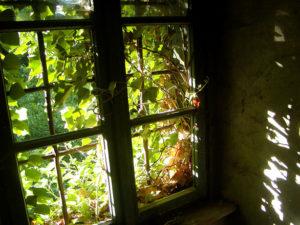 Okno wymaga uszczelnienia (pixabay.com)